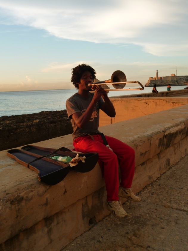 Sommer 2012 - Havana - Villa Tropico 172